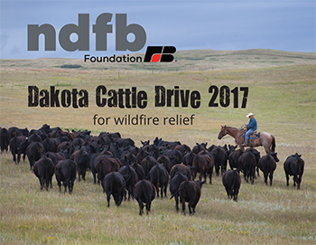 NDFB Foundation helps wildfire victims rebuild