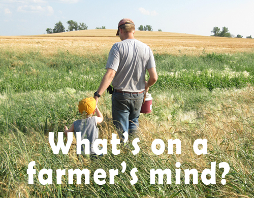 What's on a farmer's mind? Sue and settle