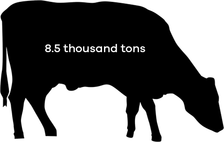 Beef cows consumed 8.5 thousand tons of soybean meal in 2016
