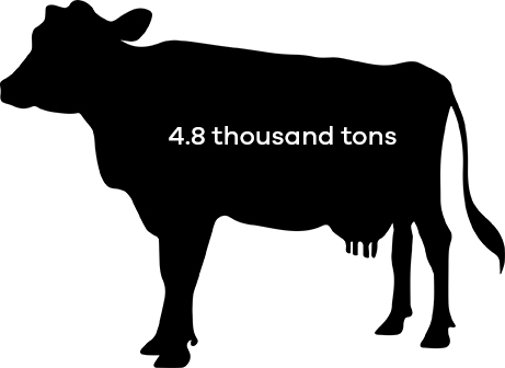 Dairy cattle consumed 4.8 thousand tons of soybean meal in 2016.